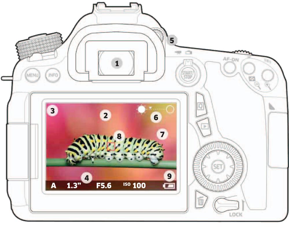 منظره یاب و LCD